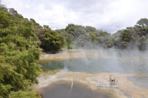 Dampfender See in Rotorua