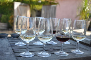Wine Tasting auf Waiheke Island