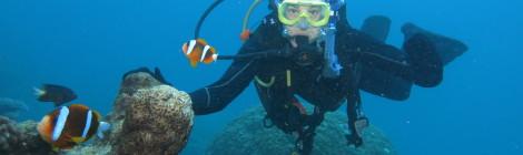 Simone findet Nemo