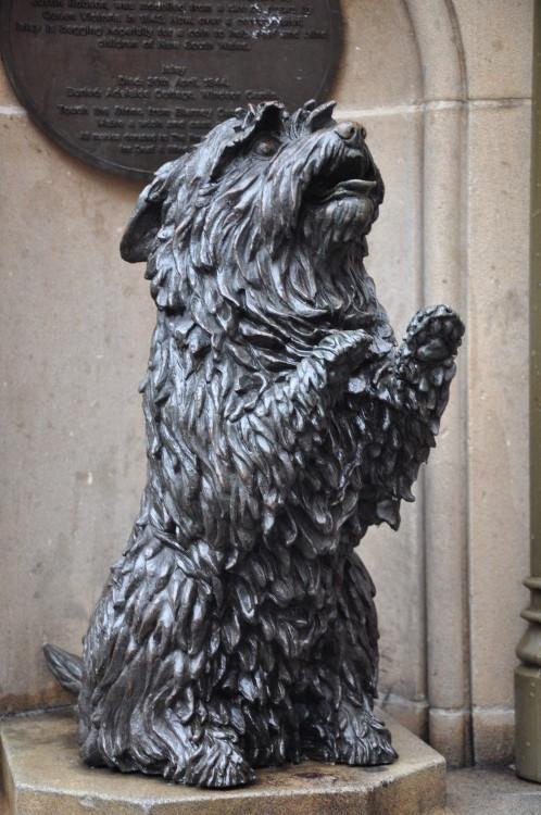 Der Hund von Queen Victoria (er spricht sogar!)