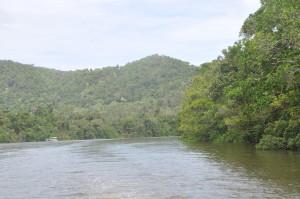 Bootsfahrt am Daintree River