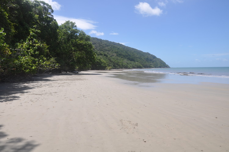 Strand am Cape Tribulation, Daintree Forest, Australien