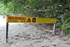 Krokodile lauern auch an allen Ecken