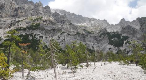 Bizarre Berglandschaft