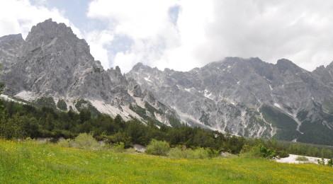 Fast am Ziel: Berge und Frühlingswiesen