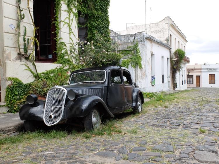 Eines der vielen alten Autos in Colonia