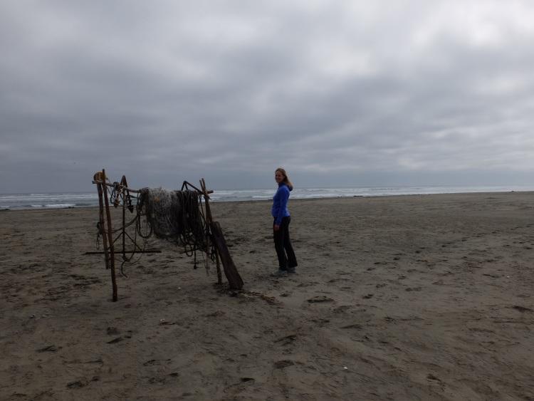 Am Strand, Nationalpark Chiloé