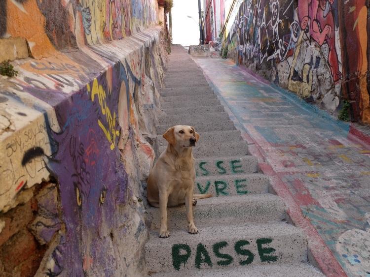 ...die unserer Walking Tour durch das historische Zentrum folgen
