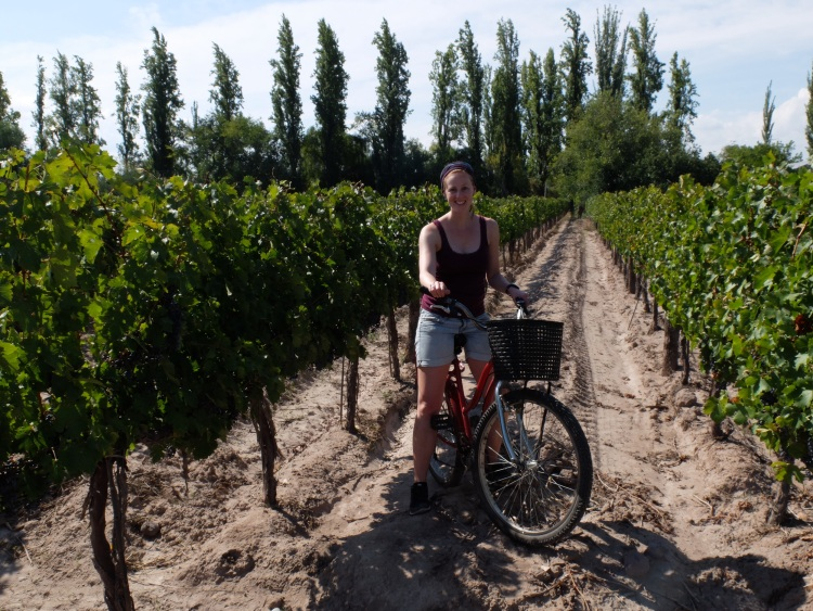 Bike & Wine bei Mendoza