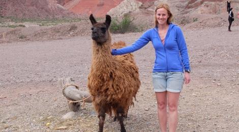 Endlich ein Lama!