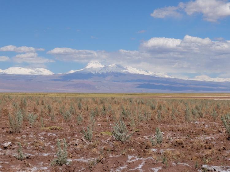 Atacamawüste mit den Anden im Hintergrund