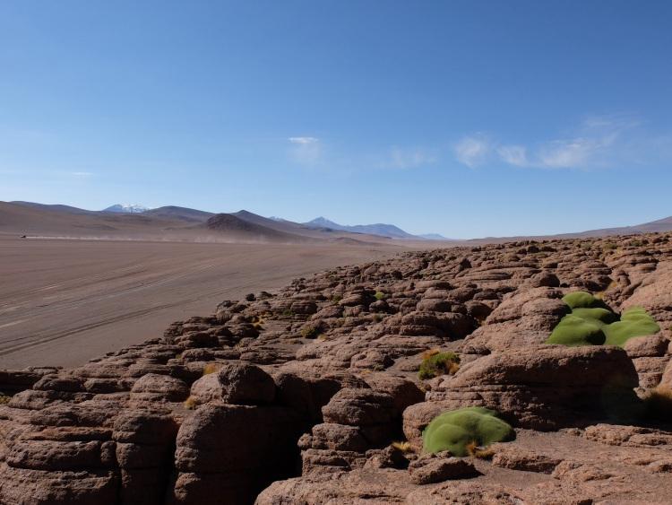 Felsformationen im Altiplano