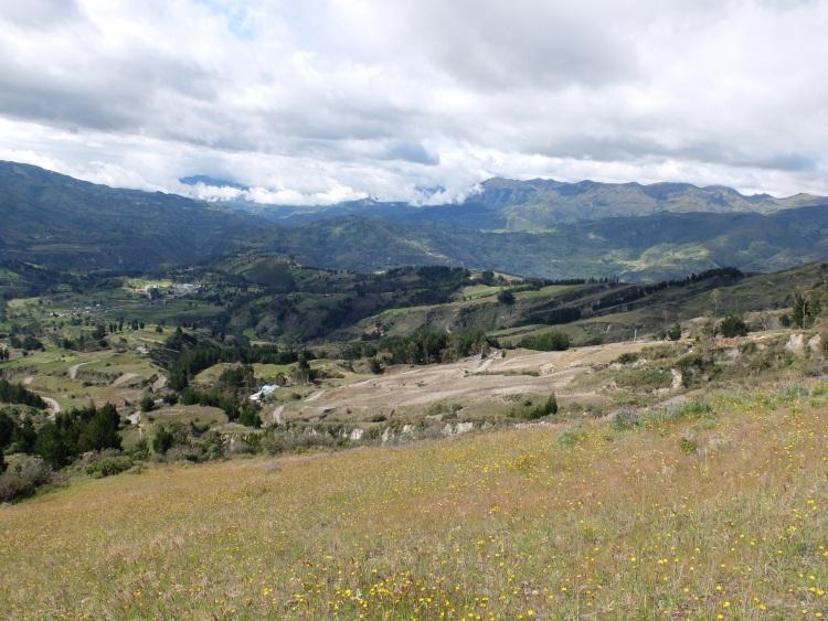 Bergab über Wiesen und Felder