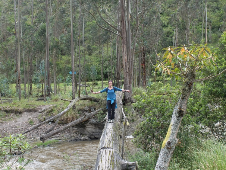 Überqueren einer Baumstammbrücke