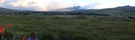 Blick zum Cotopaxi Vulkan